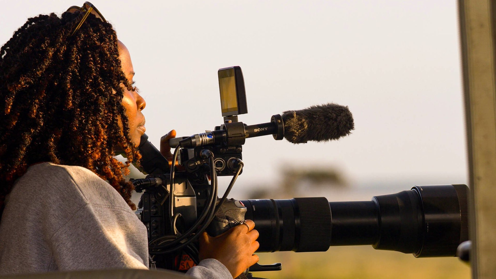 The Wildlife Filmmaker cover image